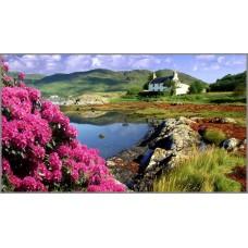 F-115 Картина ( Пейзажи Шотландии ) Алмазная мозаика 50x32см, 46 цветов