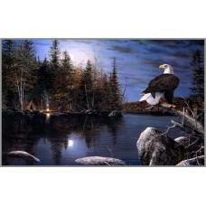 F-214  Картина (Ночной дозор) Алмазная мозаика 50x30см, 33 цвета