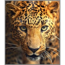 N-234 Картина (Взгляд леопарда) Алмазная мозаика 20x23см, 17 цветов