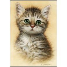 N-261 Картина (Портрет котёнка) Алмазная мозаика 20x28см, 24 цвета