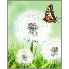 N-337 Картина (Одуванчик) Алмазная мозаика  20x27см, 27 цветов