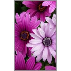 N-342х  Картина (Цветы) Алмазная мозаика 29x19 см, 26 цветов