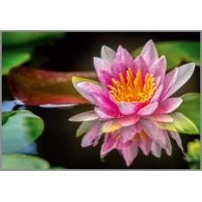 NR-22 Картина (Божественный цветок) Алмазная мозаика 29.5x20.5см, 25 цветов
