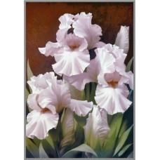 NR-35 Картина (Изысканная красота) Алмазная мозаика 29.5x20.5см, 24 цветов