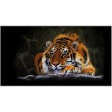 R-892 Картина (Тигр) Алмазная мозаика 95x52см, 36 цветов