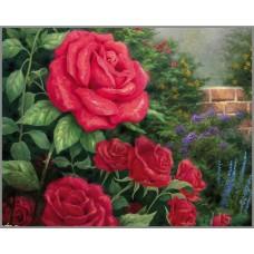 R-900 Картина (Розовый куст) Алмазная мозаика 60x47см, 32 цвета