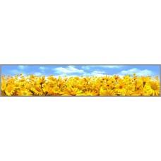 Z-185 Картина (Цветочное поле) Алмазная мозаика 75x15см.41цв.