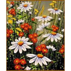 N-148 Картина (Ромашковое поле) Алмазная мозаика   20x28см, 25 цвета