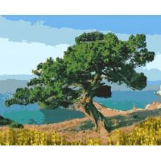 RP-5025 Картина ( Крымское дерево ав.В.Булычев) по номерам 40х50,24цв.сложность 3